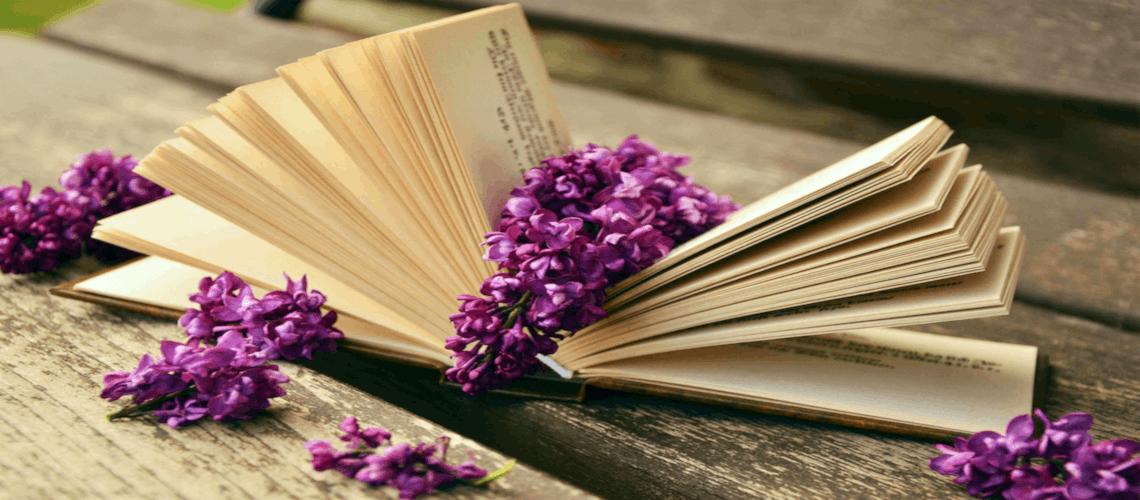 Erstellen Sie Ihr eigenes Buch!